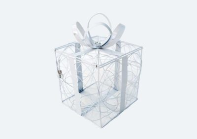 Products W1 -14_gift_box_wire